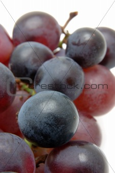 Close up of kyohou grapes