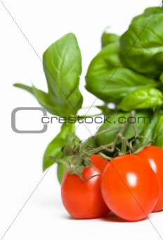 tomatos like basil