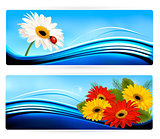 Nature banners with color flowers. Vector.