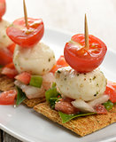 Crackers With Mozzarella Cheese And Tomatoes