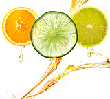 Orange,Lemon And Lime Slices