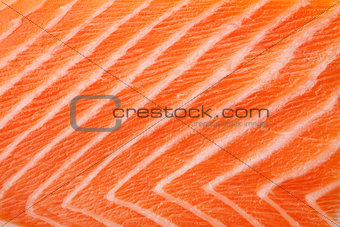 Fresh red salmon texture