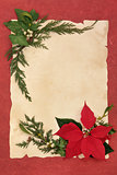 Poinsettia Decorative Border
