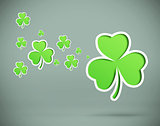 Green shamrocks on grey background