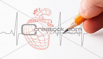 Sketch of a heart and heart rate line