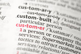 Customer definition