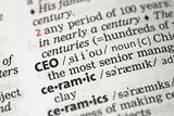 CEO definition