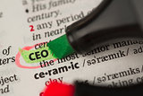 CEO definition highlighted and circled in the dictionary