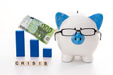 Blue and white piggy bank wearing glasses with crisis message