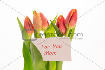 Bouquet of pink and yellow tulips with mothers day greeting card