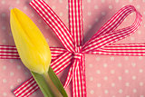 Yellow tulip resting on girly present