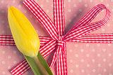 Yellow tulip resting on girly present