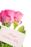 Happy mothers day card with pink roses
