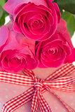 Pink roses resting on pink polka dot wrapped present