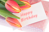 Pink and yellow tulips resting on pink wrapped present with happy birthday greeting