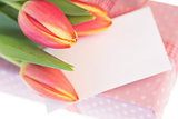 Pink and yellow tulips resting on pink wrapped present with blank card