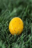 Small yellow easter egg