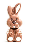 Cute chocolate bunny
