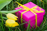 Pink gift box and yellow tulips