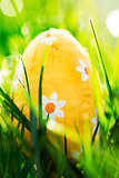 Easter egg nestled in the green grass