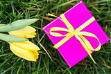 Pink gift box with yellow ribbon and yellow tulips