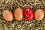 Red egg on straw with plain ones