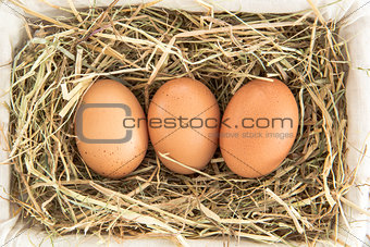 Three eggs in a basket