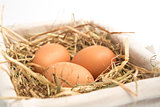 Three eggs in basket