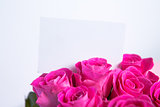 Bouquet of pink roses with blank card