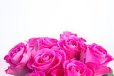Bouquet of pink roses with copy space
