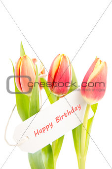 Three tulips with a happy birthday card