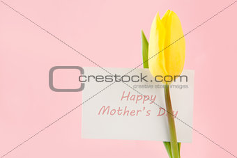 Beautiful yellow tulip with a Happy mothers day card