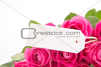 Close up of a beautiful bouquet of pink roses with a blank day card on a white background