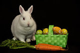 Easter bunny with green basket of eggs and carrots