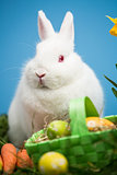 White rabbit sitting behind easter eggs in green basket