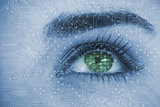 Close up of woman eye analyzing circuit board