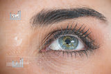 Beautiful woman eye analyzing chart interfaces