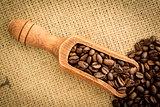 Wooden shovel full of coffee beans