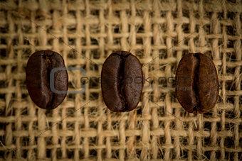 Three coffee beans in a row