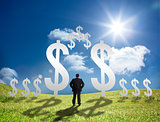 Businessman standing in a field with dollar signs