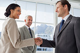 Smiling business people shaking hands with smiling colleague behind them