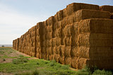 Hay Bales in Huge Stack on Corner of Farmers Field Farm Staple