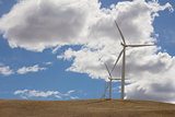 Wind Turbines Farm in Goldendale Washington