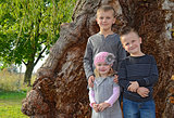 siblings by old tree
