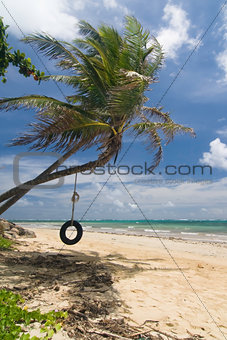 Tropical beach tire swing