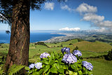 The landscapen on Sao Miguel