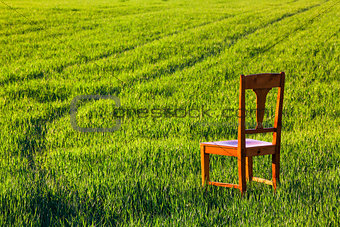 Abandoned chair on the field