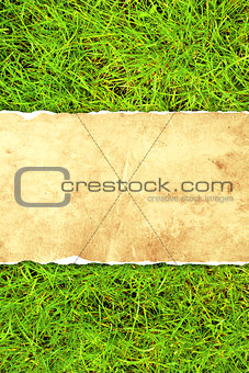 Green grass and paper