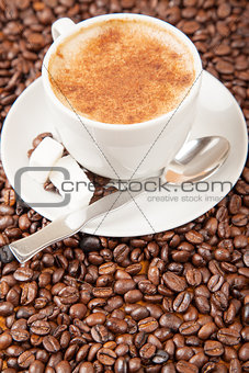 Single cup of cappuccino surrounded by coffee beans