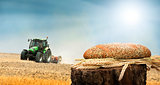 Bread and wheat cereal crops.Traktor on the background